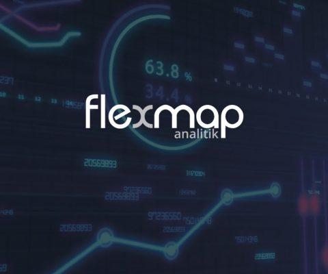 FlexMap Analitik